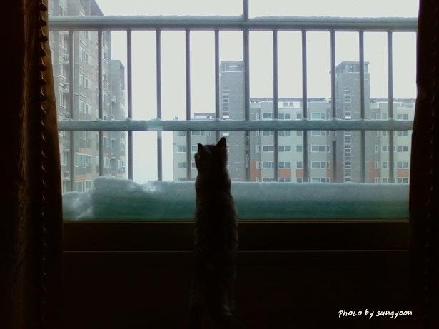 꾸미기_사진 071